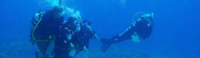 PADI Course Director Gabrielle Holder looks on as her candidates practice in Open Water at Apo Island