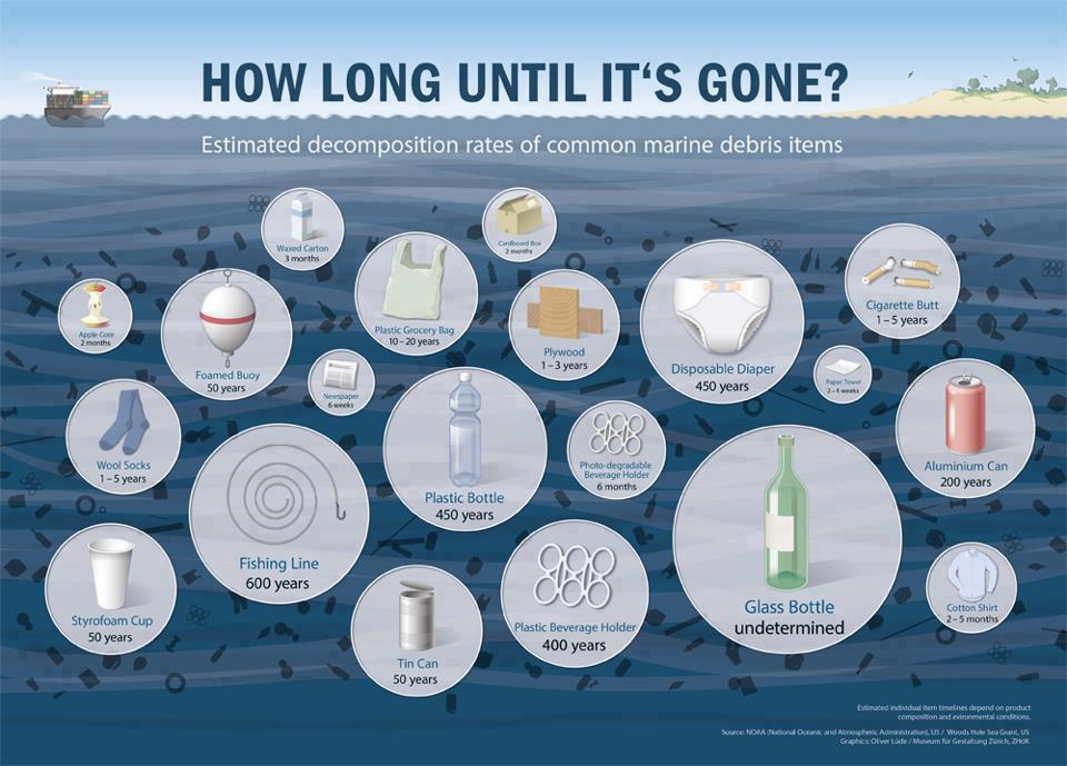 Marine-Debris-Decomp-timing