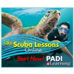Take Scuba Lesson Online