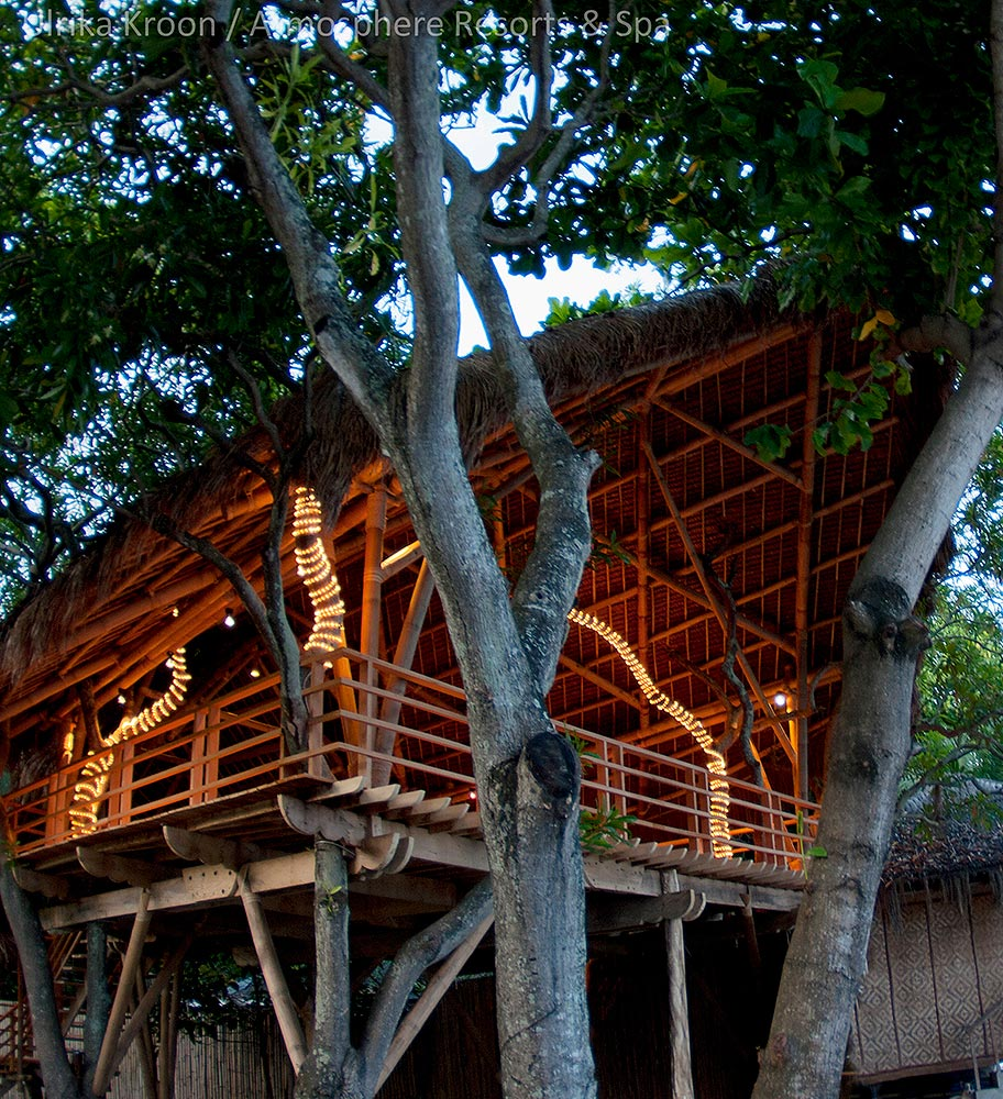 Tree House for Yoga