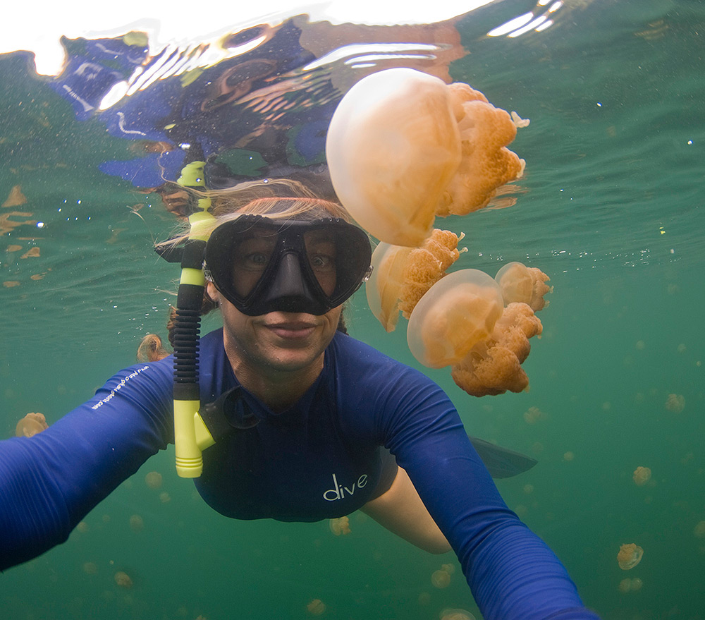 Jellyfish Lake Palau 2013