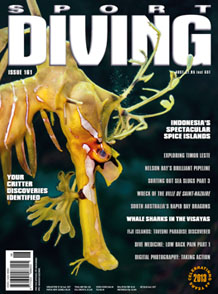 Sport Diving Magazine Jan 2014
