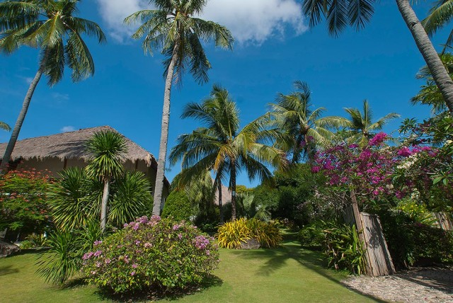 The Secrets of Tropical Gardening