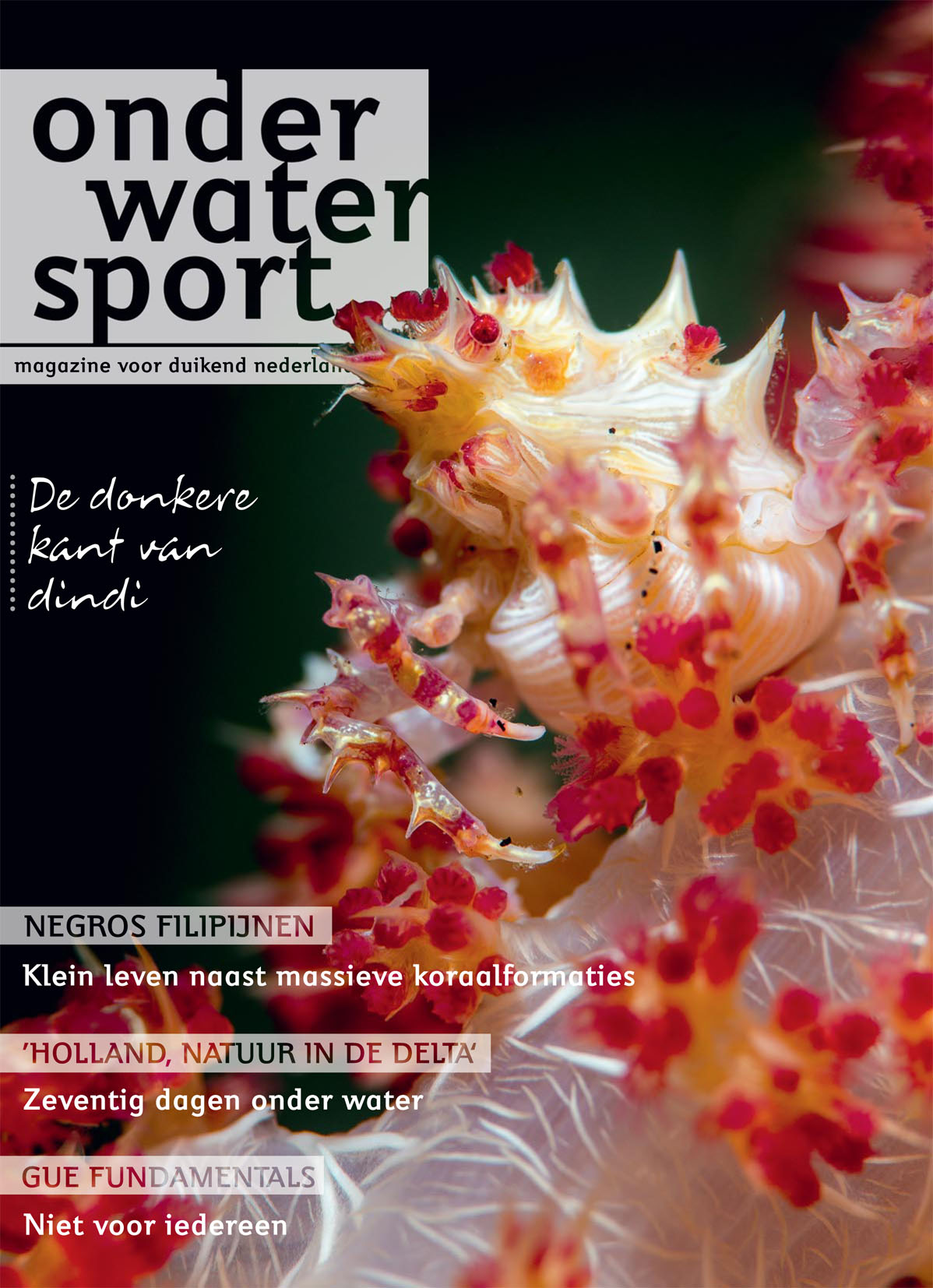 Onderwatersport October 2015