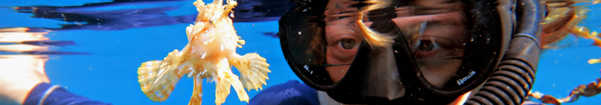 Atmosphere's marine biologist Daniel Geary with a sargassum fish on the Atmosphere house reef in the Philippines