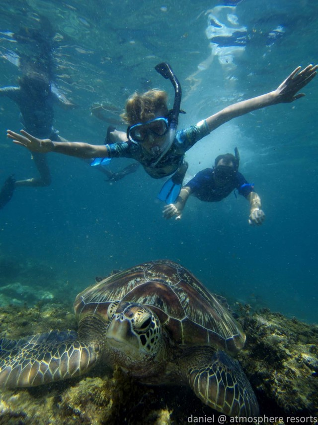 Children can snorkel with turtles in Apo Islanbd with Atmosphere Resorts & Spa