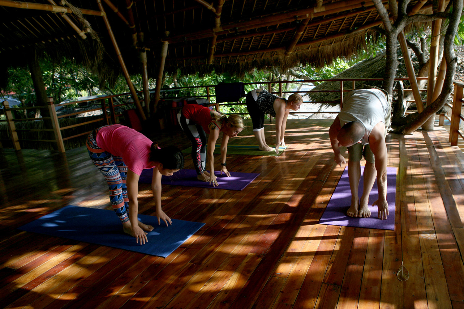 Yoga in the tree house with Tim Feldmann