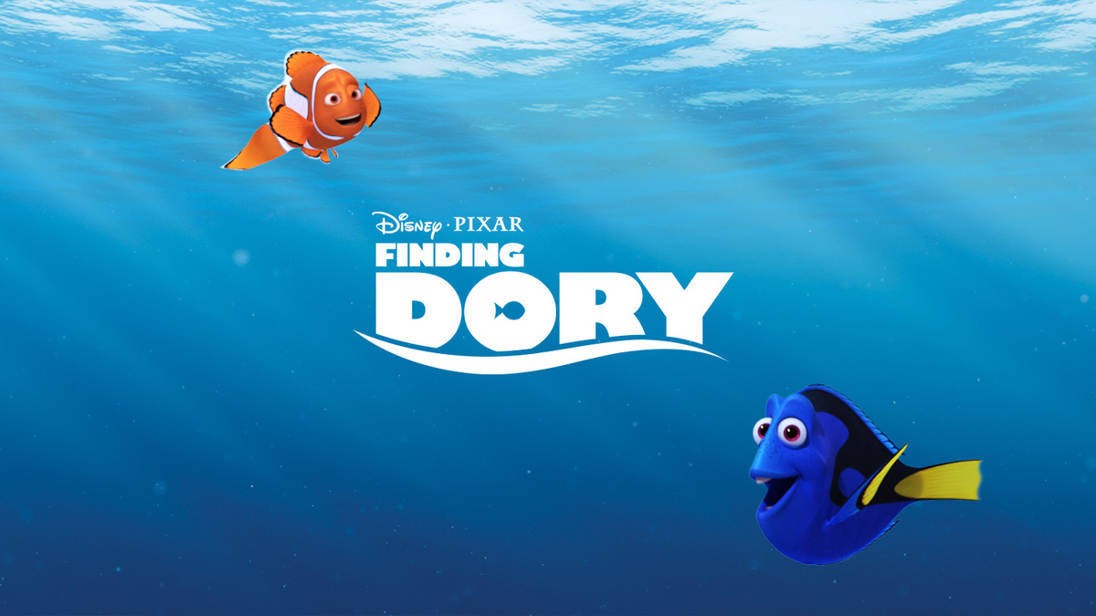 finding dory - the cute surgeonfish also in the philippines