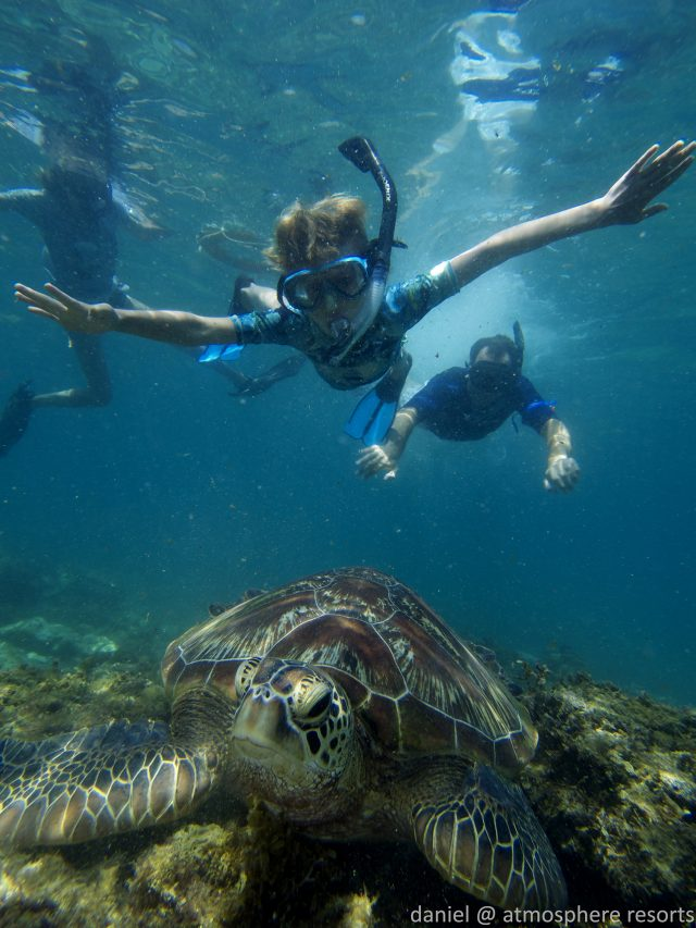 Children swimming with sea turtles in Apo island with Atmosphere Philippines. Photo by daniel Geary