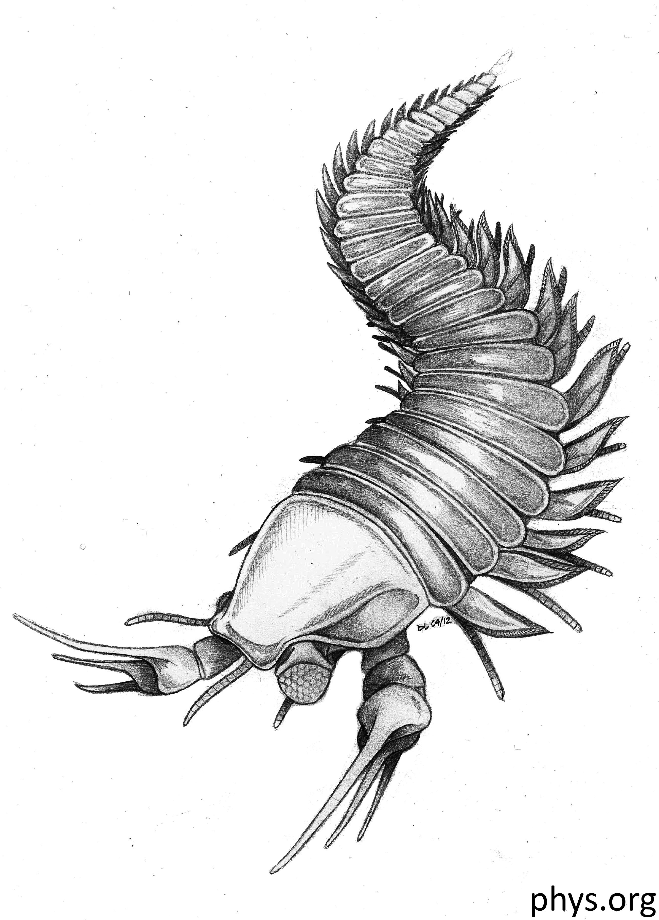 Edward Scissorhands – A scientist found a fossil of an extinct ancestor of lobsters and scorpions. It reminded him of Edward Scissorhands, so he named it Kooteninchela deppi, in honor of Johnny Depp who played the character, with 'chela' the Latin name for claws or scissors. Article by Daniel Geary, Atmosphere Resort Philippines