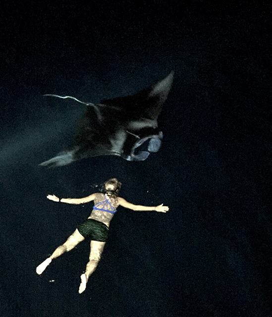 Night-swimming with manta ray in Palau 2017