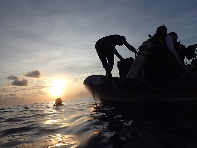 Sunset dive in Tubbataha 2018