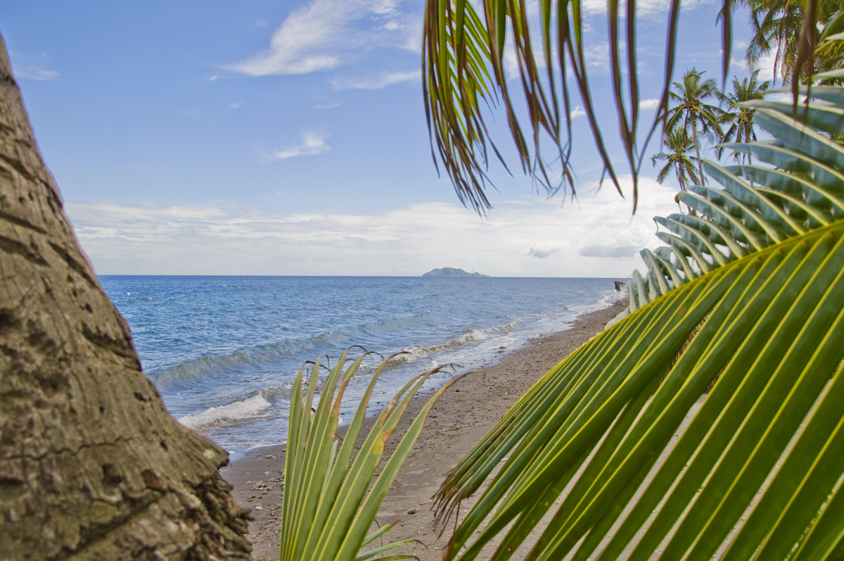 beach life  atmosphere resorts