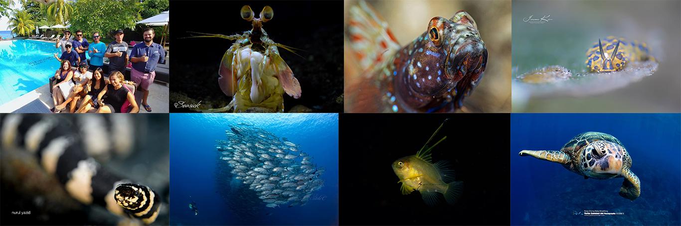 dream tour dumaguete underwater photographers at Atmosphere resorts