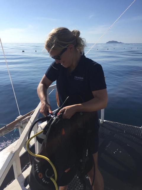 marine biologist, atmosphere resorts, dauin, negros oriental
