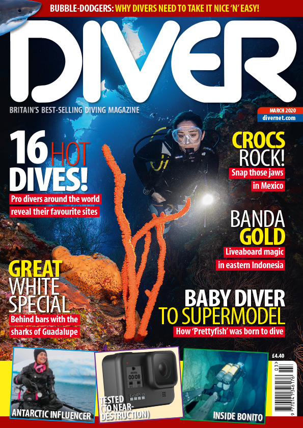 DIVER March 2020